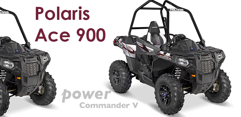 Polaris Ace 900